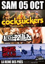 Concert 3615 allu, Loopzilla et Les Cocksuckers,